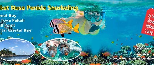 paket tour nusa penida snorkeling
