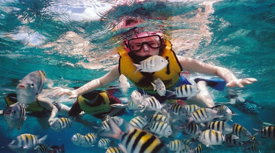 snorkeling di nusa penida2